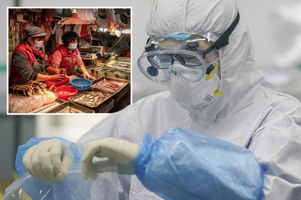 Coronavirus 'did NOT come from animals in Wuhan market' and was 'taken in by someone already carrying the killer bug'