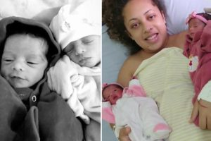Family of 26-day twins 'ripped apart' by jealous pet Labrador say 'our hearts will hurt forever'